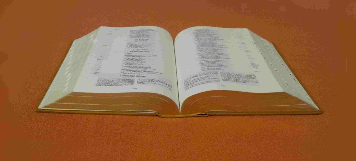 Výzva ke katechezi 2016/17